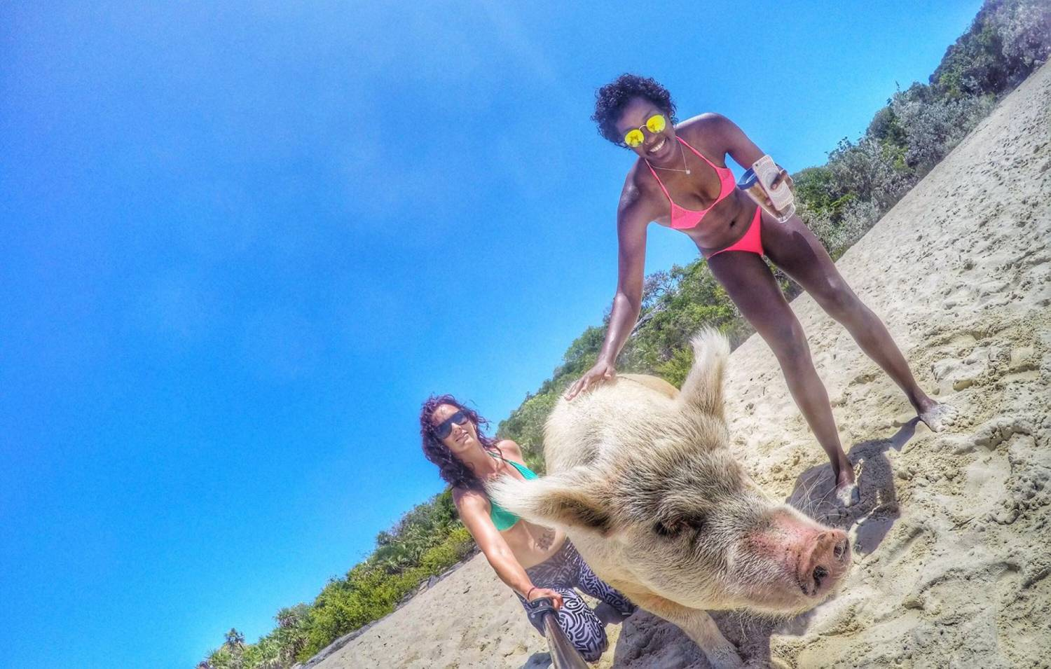 Exuma Escapes Swimming Pigs 3 - Weddings By Funjet